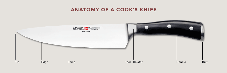 anatomyOfCooksKnife (1)